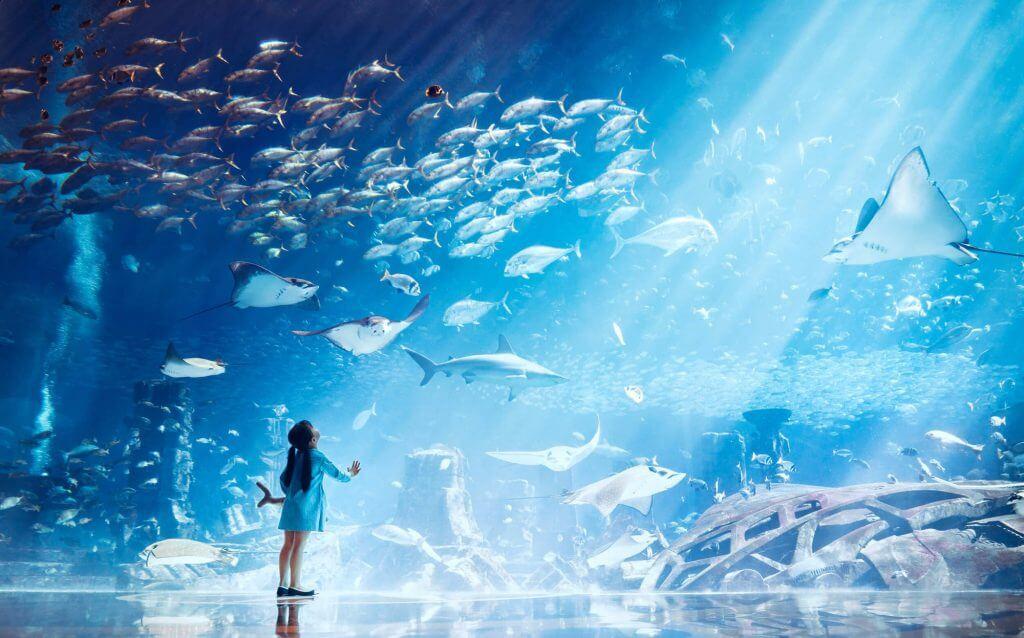 akvarium dubaj
